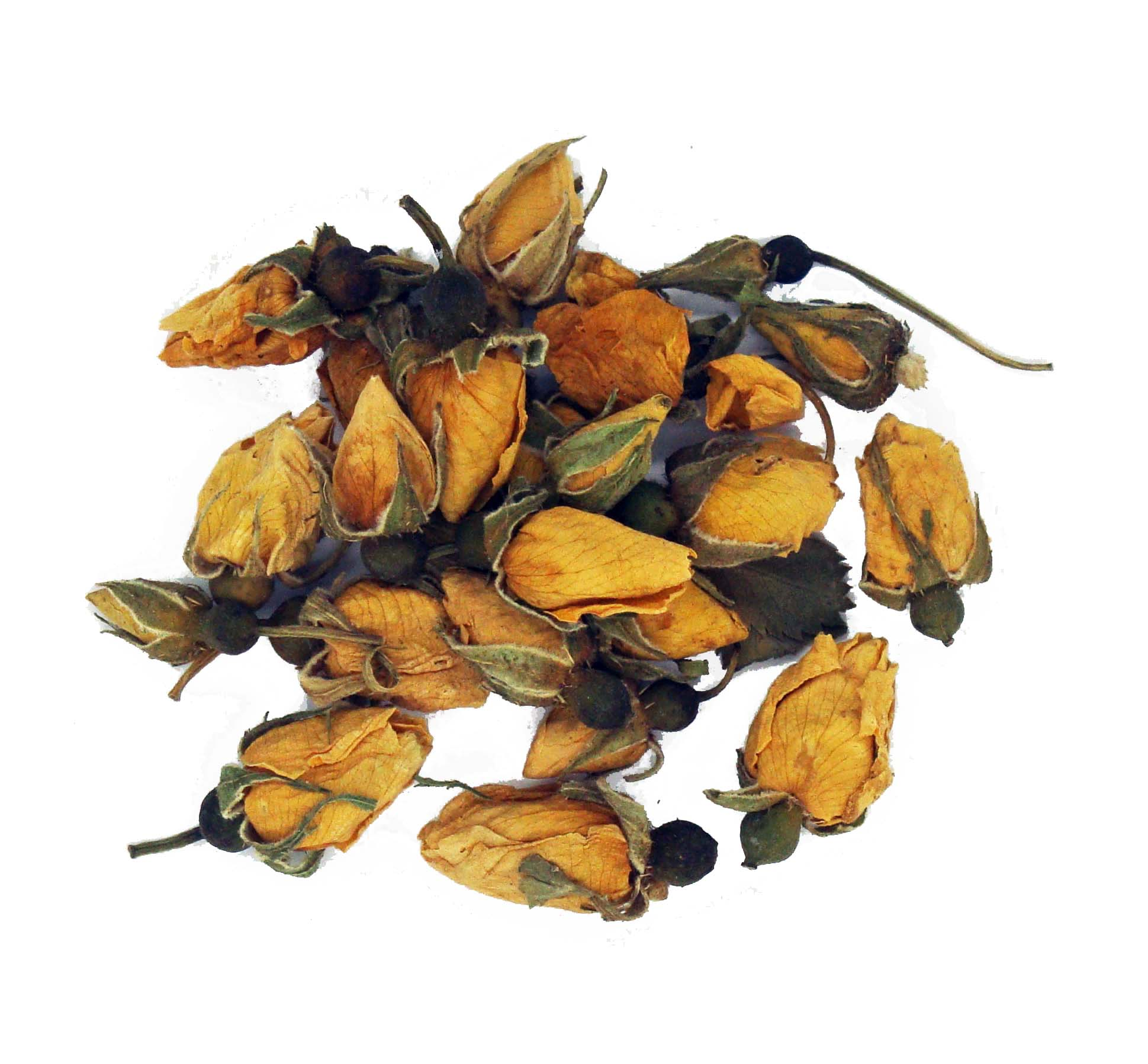 Rose Buds Yellow