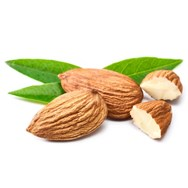Sweet Almond Oil Expressed
